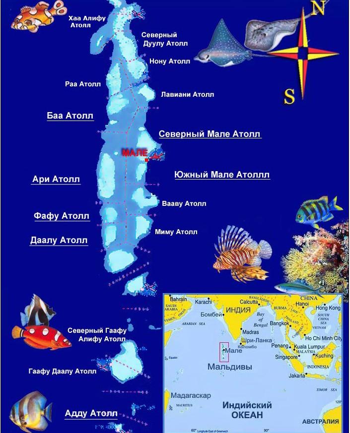 Мальдивских островов где находятся